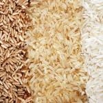 Il riso: prezioso cereale