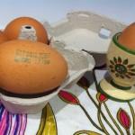 La carta di identità delle uova