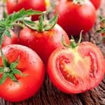 I pomodori dell'estate